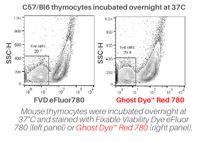 Mouse thymocytes were incubated overnight at 37°C and stained with Fixable Viability Dye eFluor 780 (left panel) or Ghost Dye™ Red 780 (right panel).