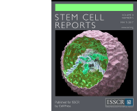Stem Cell Reports Journal Cover