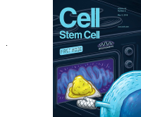Cell Stem Cover